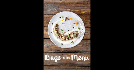Bugs On the Menu on iTunes | Entomophagy: Edible Insects and the Future of Food | Scoop.it