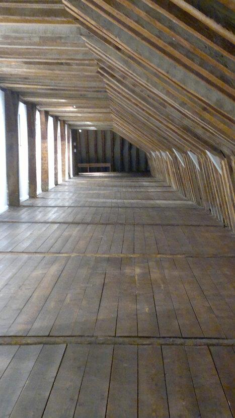 L'utilisation du bois dans la construction bientôt déclarée d'intérêt général | CULTURE, HUMANITÉS ET INNOVATION | Scoop.it