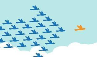 A Guide to Growing Your Twitter Audience | Writing for Social Media | Scoop.it
