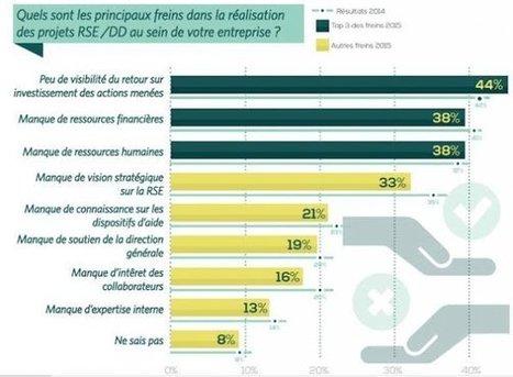 Responsabilité sociétale des entreprises : pourquoi ça coince ? | RSE, professionnels et entreprises responsables : actus et solutions | Scoop.it