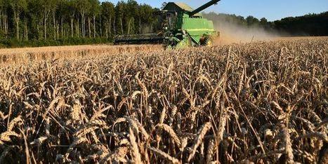 Les députés débattent de nouveau de l'accaparement des terres agricoles - le Monde | Actualités écologie | Scoop.it