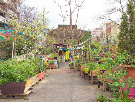 Avec les jardins partagés, Paris part en campagne | Future cities | Scoop.it