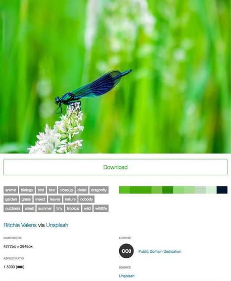 Findaphoto : trouver des photos gratuites par couleur ou par mot clé | Des cliparts pour mes maps | Scoop.it