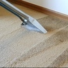 waterloo carpet cleaning
