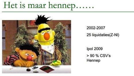 Steeds meer doden door cannabis in Nederland! «  NolvanSchaik.nl | Cannabis & CoffeeShopNews | Scoop.it