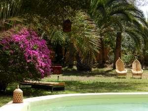 Au Jardin de la Koudya, près de Taroudant… | Ecotourisme au Maroc | Scoop.it