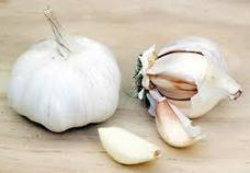 Research shows garlic may be an effective treatment for diabetes and oxidative stress | Allicin, the heart of garlic | Scoop.it