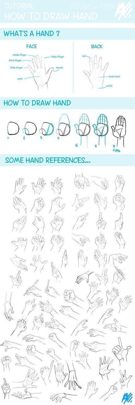 Hand Drawing Reference Guide | Circolo d'Arti | Scoop.it
