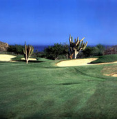 Cabo San Lucas, the best place to play golf   Cabo San Lucas   Scoop.it