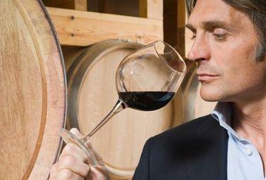 L'alcool améliore-t-il notre odorat? - Magazine du vin - Mon Vigneron | Actualités du Vin | Scoop.it