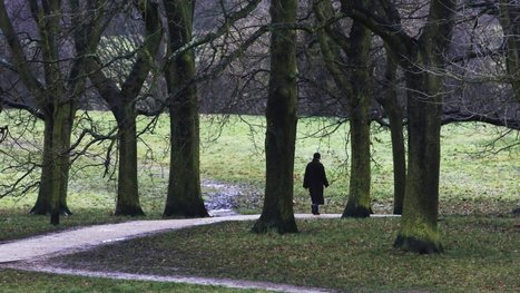 Research backs up the instinct that walking improves creativity | One Step at a Time | Scoop.it
