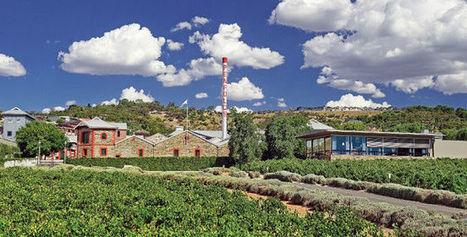 Dans le secret des grands vins d'Australie | Le vin quotidien | Scoop.it
