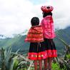 Amérique Latine : entre croissance et territoires en marge, une zone au développement inégal.