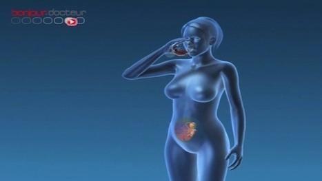 Grossesse et alcool : qui trinque? : Allodocteurs.fr | 9 mois de grossesse: enceinte et en forme | Scoop.it
