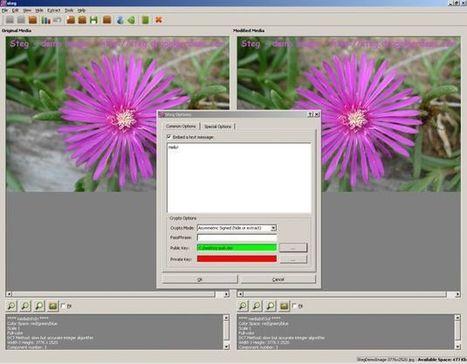 Steg, software gratuito para ocultar archivos en el interior de imágenes | Educación basada en competencias | Scoop.it