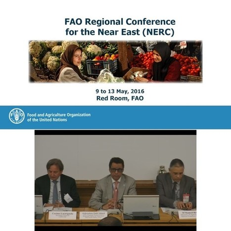 During the 33rd session of FAO Regional Conference for the Near East - FAO and CIHEAM plant the seeds of food sustainability in the Near East and North Africa Region - Istituto agronomico mediterra... | FTN Mediterranean Agriculture & Fisheries | Scoop.it