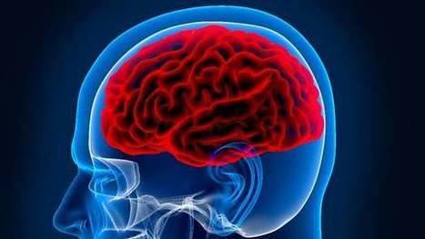 Sound used to detect unsound brains | Longevity science | Scoop.it