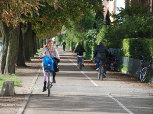 In Bike-Friendly Copenhagen, Highways For Cyclists | Geography Education | Scoop.it