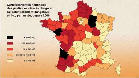 France TV: Children in Danger as Farmers Spray 65,000t of Pesticides on Farms Each Year | FrenchNewsOnline | French News Headlines | Scoop.it