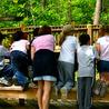 PRIME Facilitation of Learning