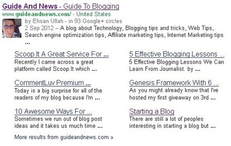 Google SiteLinks: How To Get Google Sitelinks For Your Blog | Guide and News - Guide to Blogging | Scoop.it