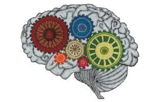 The Science of Aging Brains | Aging Well Digest | Scoop.it