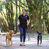Fetch! Pet Care of SW Austin & Lakeway