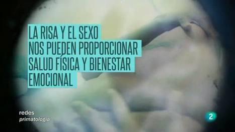 Redes - La mirada de Elsa - El humor y el sexo en nuestras vidas, Redes - RTVE.es A la Carta | Cosas que interesan...a cualquier edad. | Scoop.it