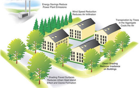 Old house building energy modeling