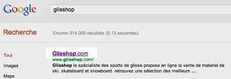 Comment Eviter les Modifications de Titre par Google | WebZine E-Commerce &  E-Marketing - Alexandre Kuhn | Scoop.it