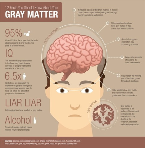 25 Facts You Should Know About Your Gray Matter | Online Universities | UDL & ICT in education | Scoop.it