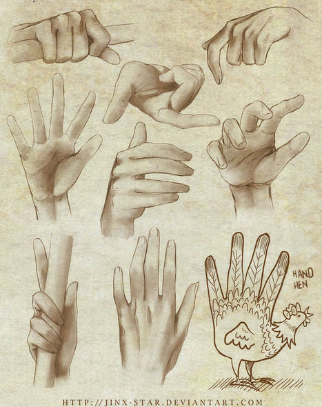Hand Reference Guide | Drawing References and Resources | Scoop.it