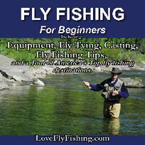 Fishing Tips Tricks and Secrets: Blueback Herring | Nova Scotia Fishing | Scoop.it