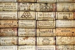 U'Wine Network : Le nouveau réseau social duvin | Wine and Co | Scoop.it