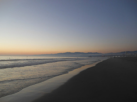 THE DAILY OCEAN | Marine Litter | Scoop.it