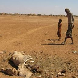 Time for a Rethink: Why Development Aid for Africa Has Failed | Communication & Social Change | Scoop.it