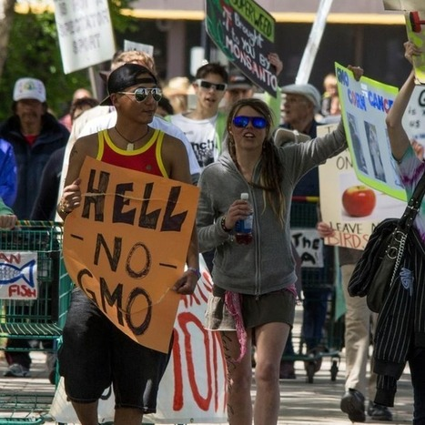 Worldwide Protest in 436 Cities Targets Monsanto and GMOs | PlanetNews | Scoop.it