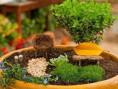 How to Create a Fairy Garden in a Container | Gardening Life | Scoop.it