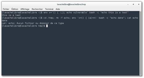 Shellshock – Vérifiez l'intégrité de vos systèmes GNU/Linux, BSD et Mac OS X – La vache libre   Astuces Linux   Scoop.it