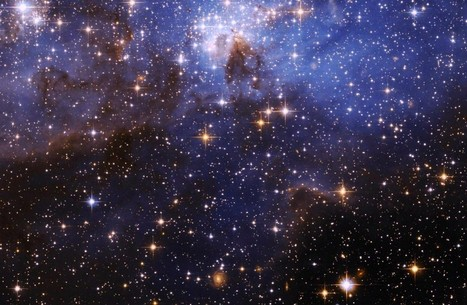 Astronauts Just Found Life In Outer Space – Scientists Ponder How It's Possible   Theories of Existence   Scoop.it