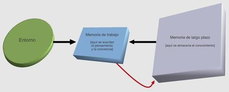 Memoria y pensamiento | Educación y TIC | Scoop.it