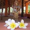Soul & Yoga International Yoga & Retreat Center