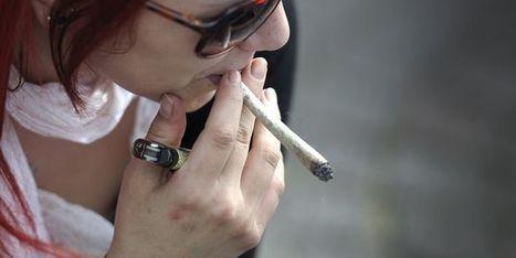 Une étude souligne les effets néfastes du cannabis sur le cerveau des adolescents   Toxique, soyons vigilant !   Scoop.it