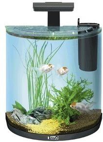 tetra puts the spotlight on aquariums pet business world news tropical fish aquaristtropical. Black Bedroom Furniture Sets. Home Design Ideas