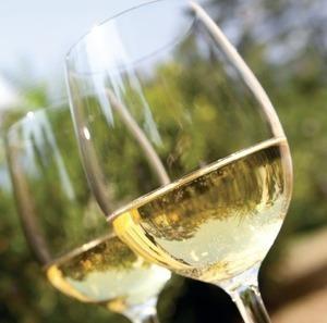 Les cépages blanc prennent de plus en plus de place dans la Rioja | actualité-buduquebec | Scoop.it