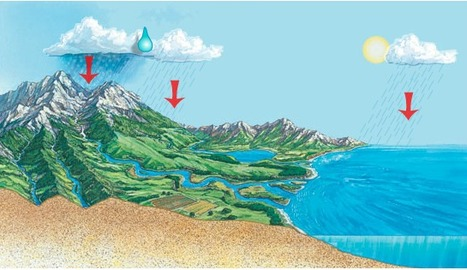 Observe a raindrop travelling through various paths of the water cycle. | Geography learning | Scoop.it