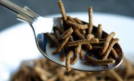 Food Ingredients Europe: cinq nouveautés dans les ingrédients techniques et fonctionnels | Actualité de l'Industrie Agroalimentaire | agro-media.fr | Scoop.it
