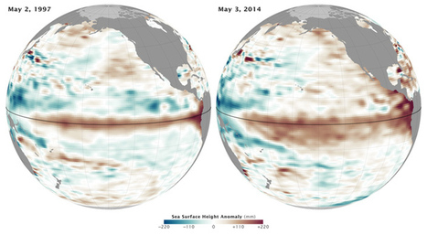 "The Rise of El Niño in 1 Swell Image | Climate Central (""chances getting higher so we have to prepare"") 