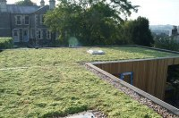 10 Benefits of LivingRoofing | Bath Property Maintenance Services | Scoop.it