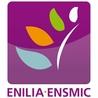 L'ENILIA-ENSMIC sur Internet (2e partie)